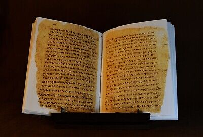 Papyrus 66 Manuscript, Facsimile 5