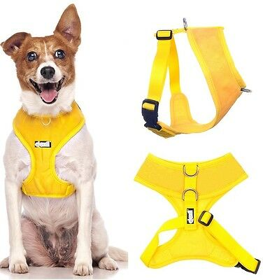 Padded Waterproof Adjustable Pet Puppy Dogs Non Pull Soft Vest Harness or Sets 5