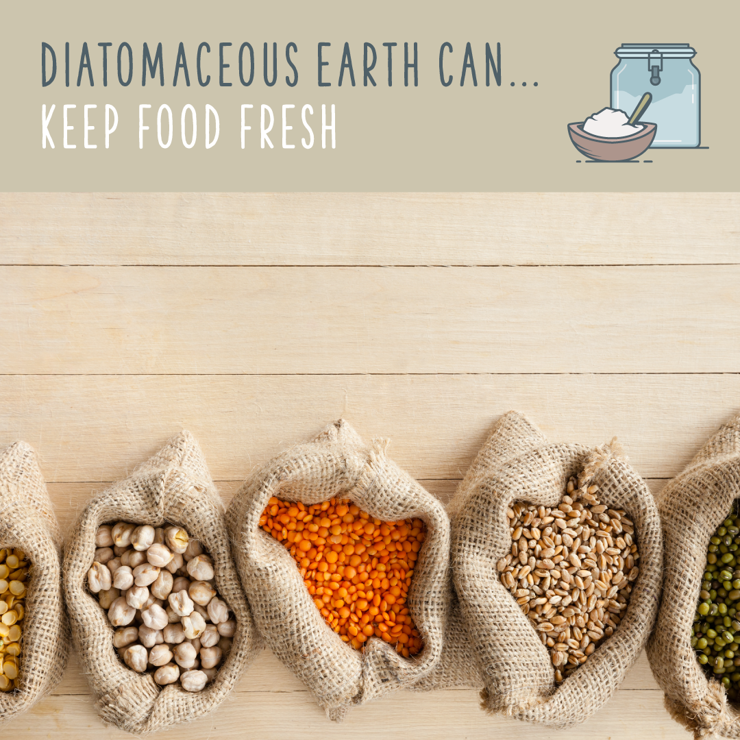 Diatomaceous Earth FOOD GRADE Pure DE Fresh Water Sourced for HUMAN USE 12