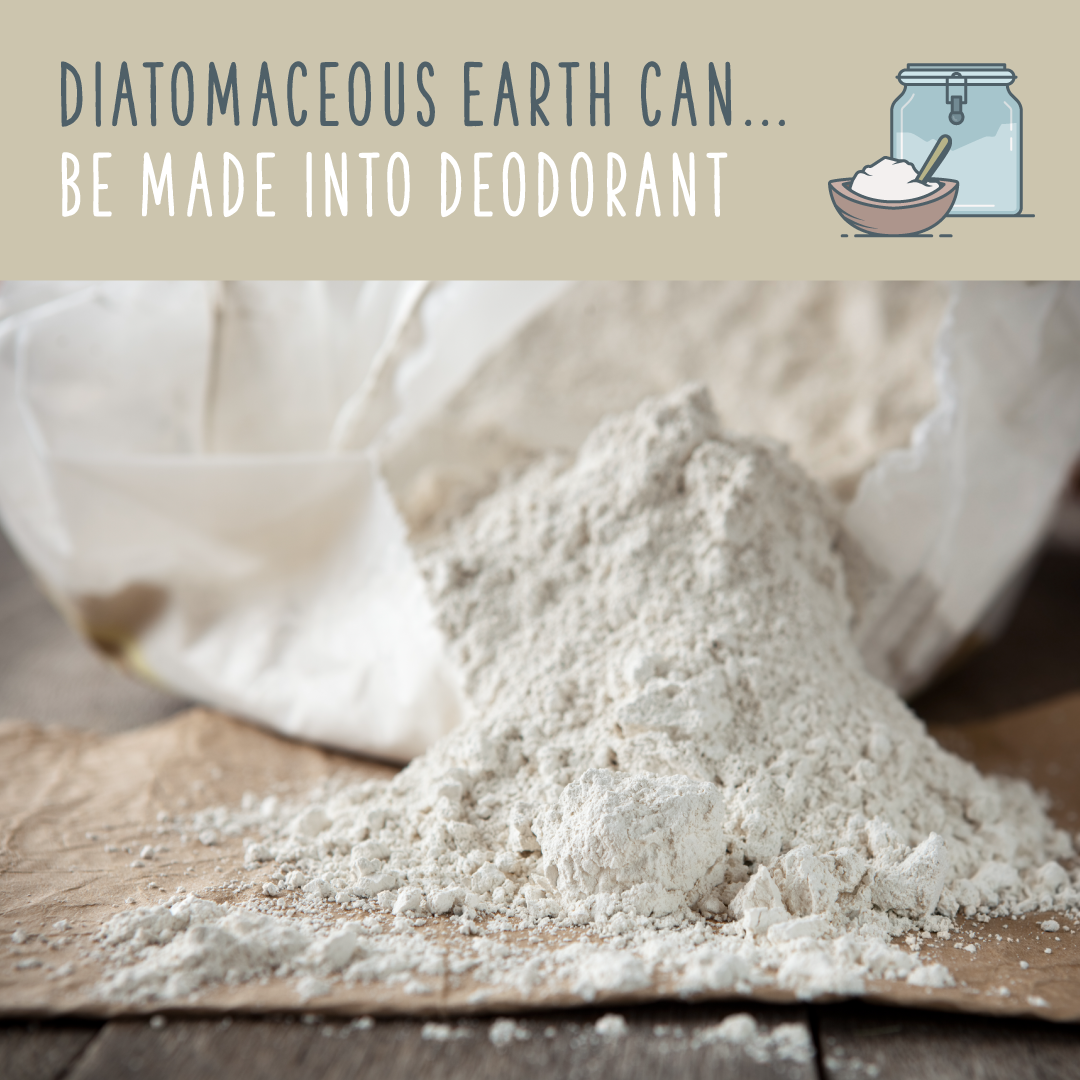 Diatomaceous Earth FOOD GRADE Pure DE Fresh Water Sourced for HUMAN USE 3