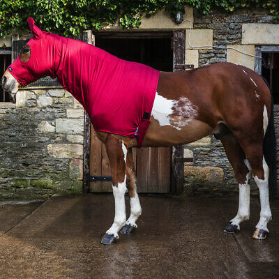 Snuggy Hoods Shiny Show Stretch Lycra Horse Hoods-8 Sizes-3 Colours-Zip/Pull On 5