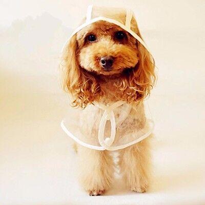 Transparent Pet Rain Coat for Dogs Pet Jacket Cute Casual Waterproof Dog Clothes