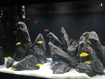 Tm Aquatix 5 Kg Natural Wood Stone For An Aquarium Aquascaping Iwagumi Style Set Of Stones Decorative Rocks
