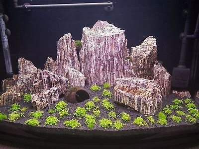 Natural Wood Stone For An Aquarium Aquascaping Iwagumi Style, Nature, Malawi 10