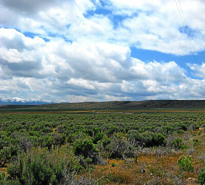 """Rare 2.27 Acre Elko Nevada Lot """"Lucky Nugget Ranches"""" W Power & 2Wd Access! Nr 11"""