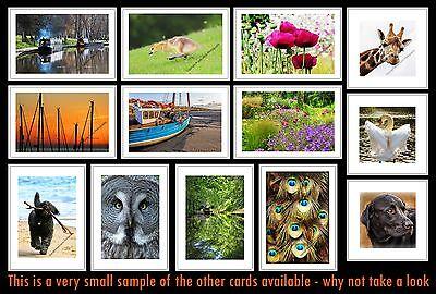 Greetings Card Birthday / Blank Notelet - Canal Narrow Boat Boating Holiday 3