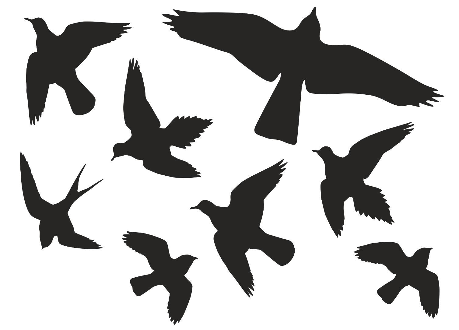 8 Stück Vögel Aufkleber Vogel Vogelschutz Warnvögel Wintergarten Fenster An 2
