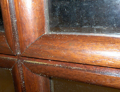 "1 Pair Mahogany & True Divided Glass Doors for 6'-0"" x 8'-4"" X 1 3/4""(72""x100"") 6"