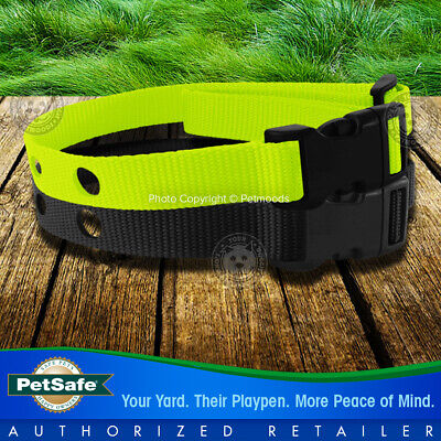 PetSafe Stay and Play Rechargeable Wireless Receiver Dog Collar Lime Green Strap 3