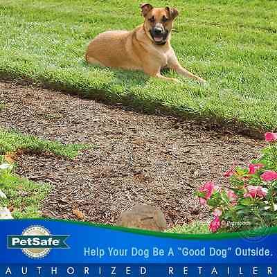 PetSafe Pawz Away Wireless Rock Pet Barrier 2 Dog Collar System PWF00-11923 9