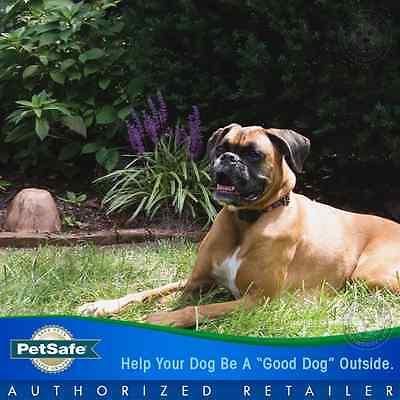 PetSafe Pawz Away Wireless Rock Pet Barrier 2 Dog Collar System PWF00-11923 11