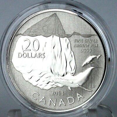 2013 CANADA $20 .9999 PURE SILVER WHALE ICEBURG  COIN  /& CARD 20//20