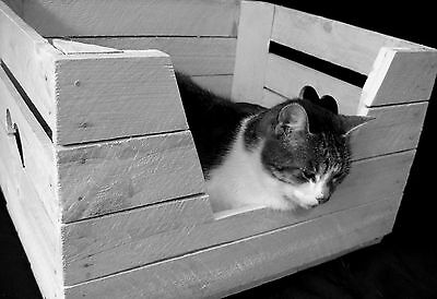 KATZENKORB + KISSEN Katze Hund Tierbett Holzkiste ALTE OBSTKISTE Vintage Shabby 4