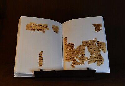 Papyrus 66 Manuscript, Facsimile 3
