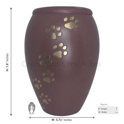 Urn for Pet Ashes, Golden Paw Prints Pink Memorial Urn