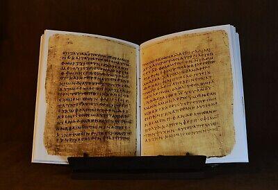 Papyrus 66 Manuscript, Facsimile 6
