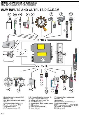 1999 evinrude ficht engine diagram 1999 wiring diagrams cars professional evinrude etec diagnostic cable t ficht johnson