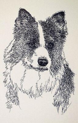 American Eskimo Dog Art Portrait Drawn from Words #43 Kline adds dog name free.