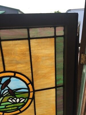 Sg 871 Antique Stainglass Lily Pad/Cat Tail Landing Window