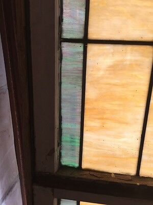Sg 871 Antique Stainglass Lily Pad/Cat Tail Landing Window 5