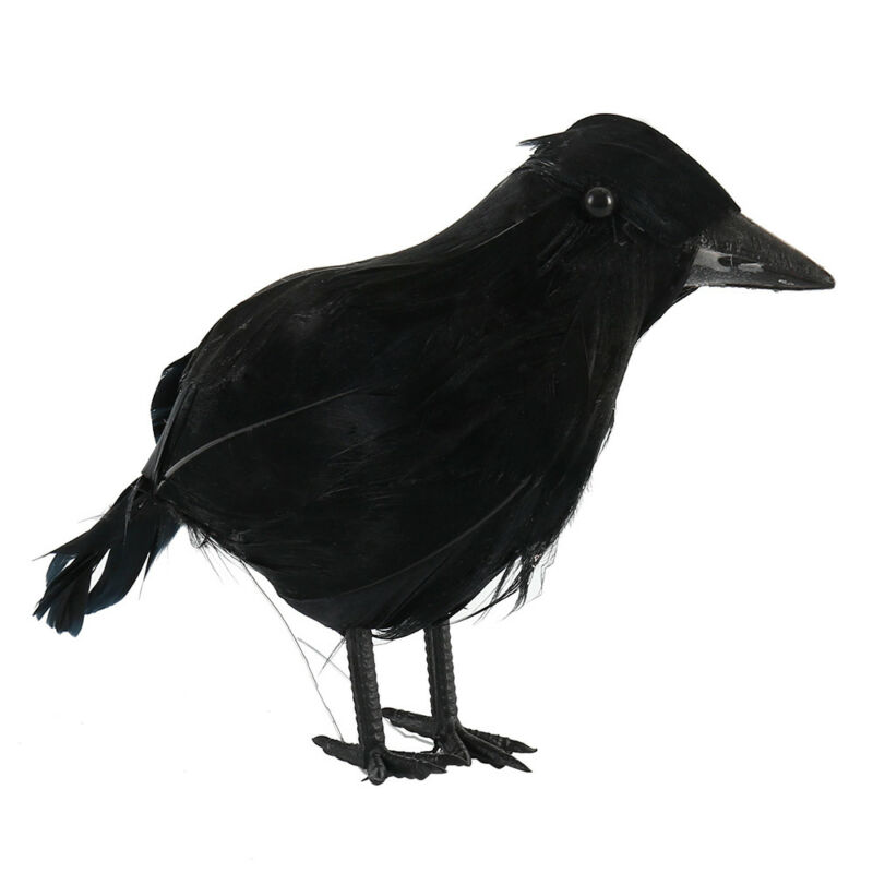 Black Lifesize Raven Movie Prop Fake Crow Halloween Fake Bird Hunting Decor EN 5