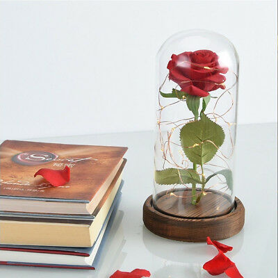 US Beauty And The Beast Enchanted Rose Glass LED Lighted Wedding Home Decor Gift