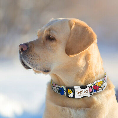 Nylon Personalized Dog Collar Small Large Engraved Buckle Custom ID Name Tag SML 9
