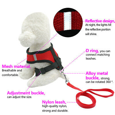 Cute Cat Walking Harness and Leash Large Kitten Clothes Pink Blue Red Black