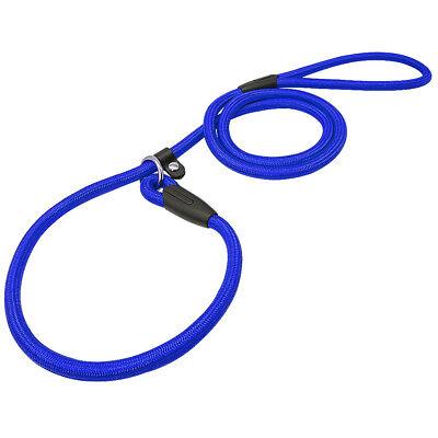Nylon Rope Slip Dog Lead 5ft Pet Collar Training Show Leash Red Black Blue Brown 5