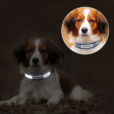 Reflective Personalised Dog Collar Cat Puppy Small Dog Collar Name Phone Engrave 10