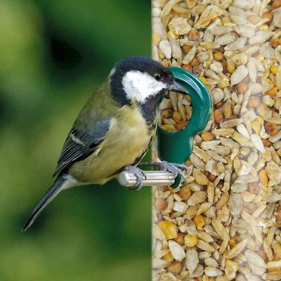 GardenersDream No Mess Seed Mix - Premium Quality Husk-Free Wild Bird Food 3