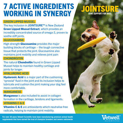 JOINTSURE Dog Joint Supplement More Active Ingredients Than The Leading Brand 7
