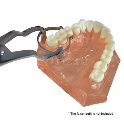 TOR VM Sectional Contoured Matrice Matrix Ring & 40 Add-On Wedges & Plier Dental 11