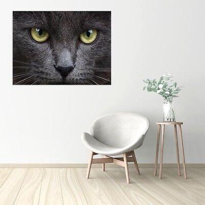 Stampa su Tela Vernice Effetto Pennellate gatto