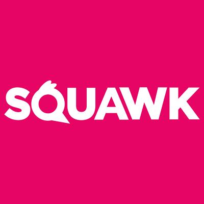 SQUAWK Dried Mealworms - Premium Quality Wild Bird Food Garden Snacks For Birds 6