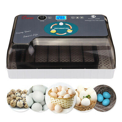 12 Digital Egg Incubator Chicken Hatcher Automatic Turning Temperature Control 3