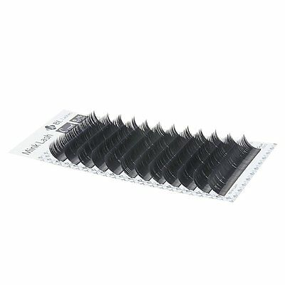 Blink BL Lashes Mink Tray Lashes B,C,D,J curl For Individual Eyelash Extensions 2