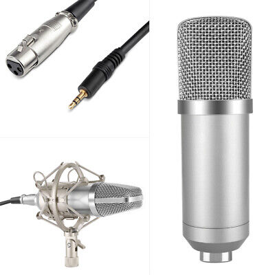 Professional Studio Condenser Microphone Kit Recording Broadcasting Shock Mount 4