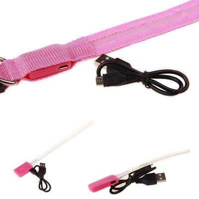 USB Rechargable LED Dog Pet Collar Flashing Luminous Safety Light Up Nylon 6