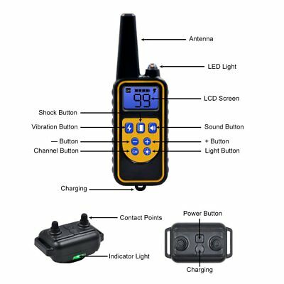 Rechargeable 2600 FT Remote Dog Training Shock Collar Waterproof Hunting Trainer 9