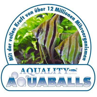 (0,58 Euro/Stück) AQUALITY AQUABALLS frische Mikroorganismen- 12 Balls 3