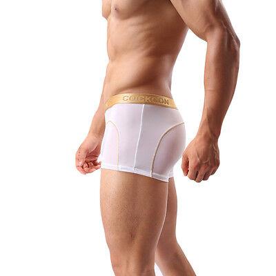 Boxer Transparent Sexy Homme Thong Man Underwear Uomo Lenceria M L Xl Xxl 9