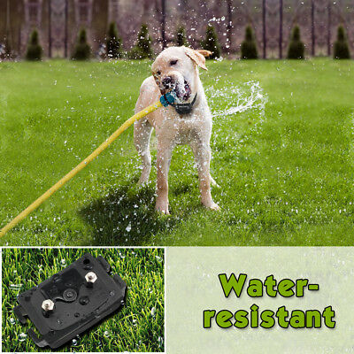 Petrainer Dog Training Shock Collar &Remote Electric Rechargeable Bark Control 5