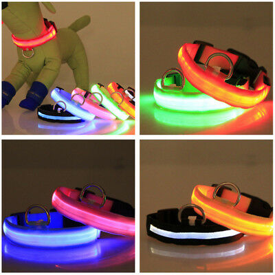 USB Rechargable LED Dog Pet Collar Flashing Luminous Safety Light Up Nylon 4