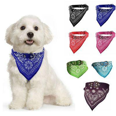 Pet Dog Cat Neck Scarf Bandana with Leather Collar Neckerchief Adjustable CA LD7 3