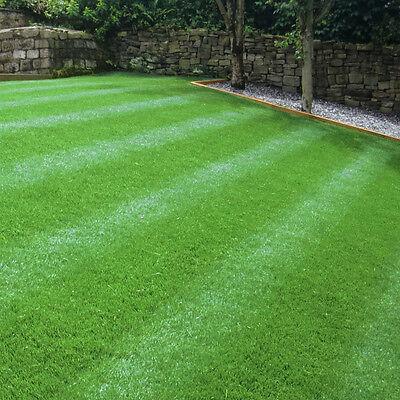 GroundMaster HardWearing Tough Garden Premium Back Lawn Grass Seed Various Sizes 2