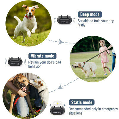 Petrainer Waterproof Rechargeable Dog Training Collar Shock Collar with Remote 4