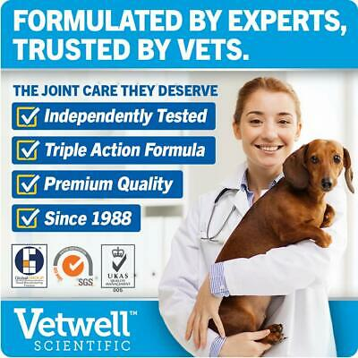 JOINTSURE Dog Joint Supplement More Active Ingredients Than The Leading Brand 6