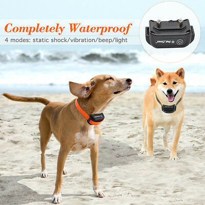 Petrainer Dog Training Shock Collar Waterproof Rechargeable Remote Control 2 Dog 5