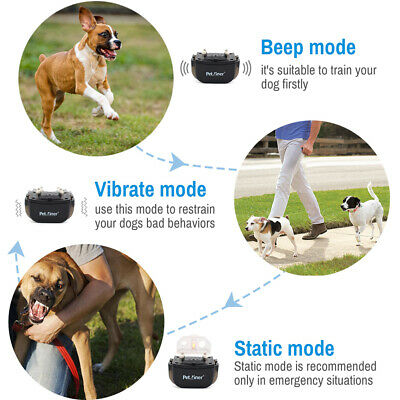 Petrainer Rechargeable Dog Training Shock Collar with Remote 2 Collars 330 Yards 3